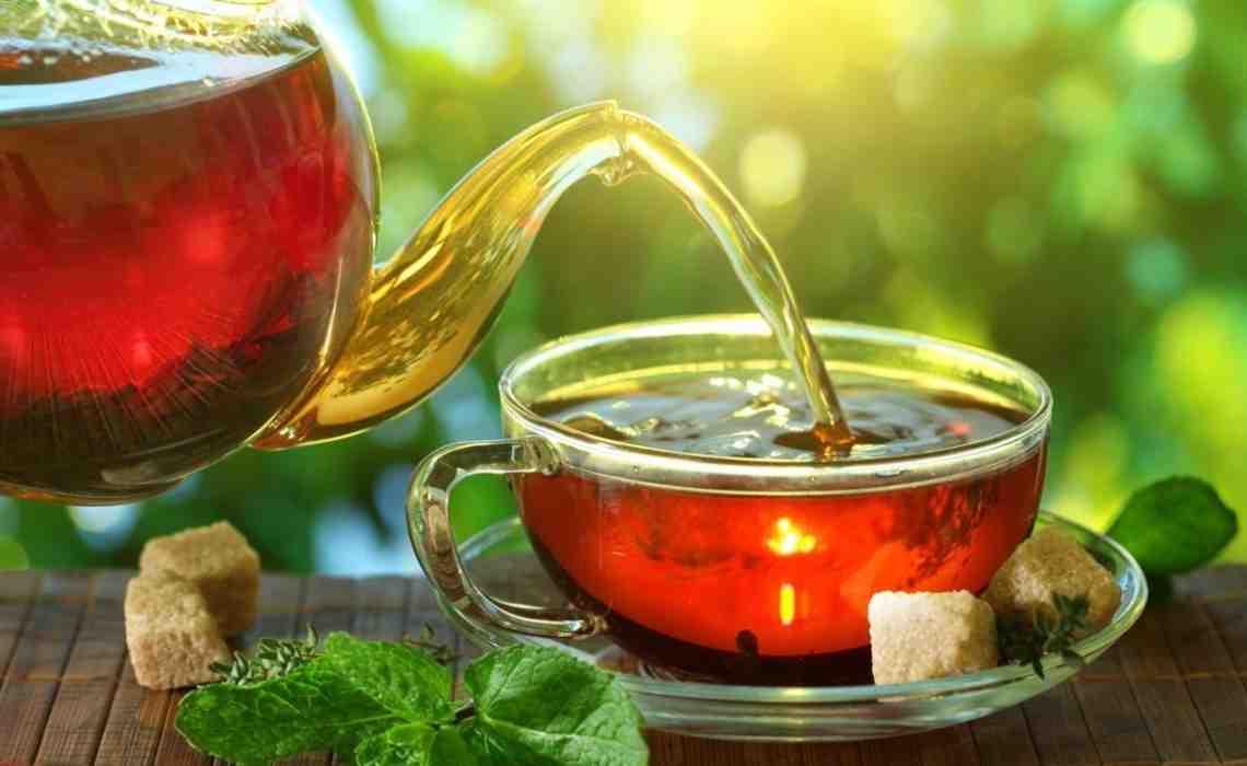 Quel est le meilleur thé pour la santé ?