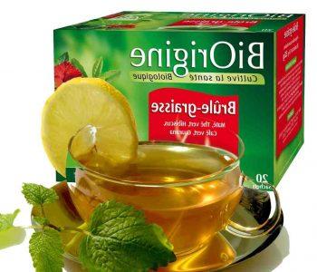 Quel est le meilleur thé pour maigrir ?