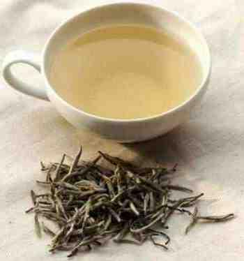 Quel thé na pas de théine ?