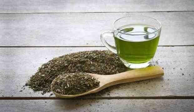 Quel thé vert consommer ?