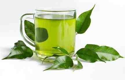 Quel thé vert pour perdre du poids ?