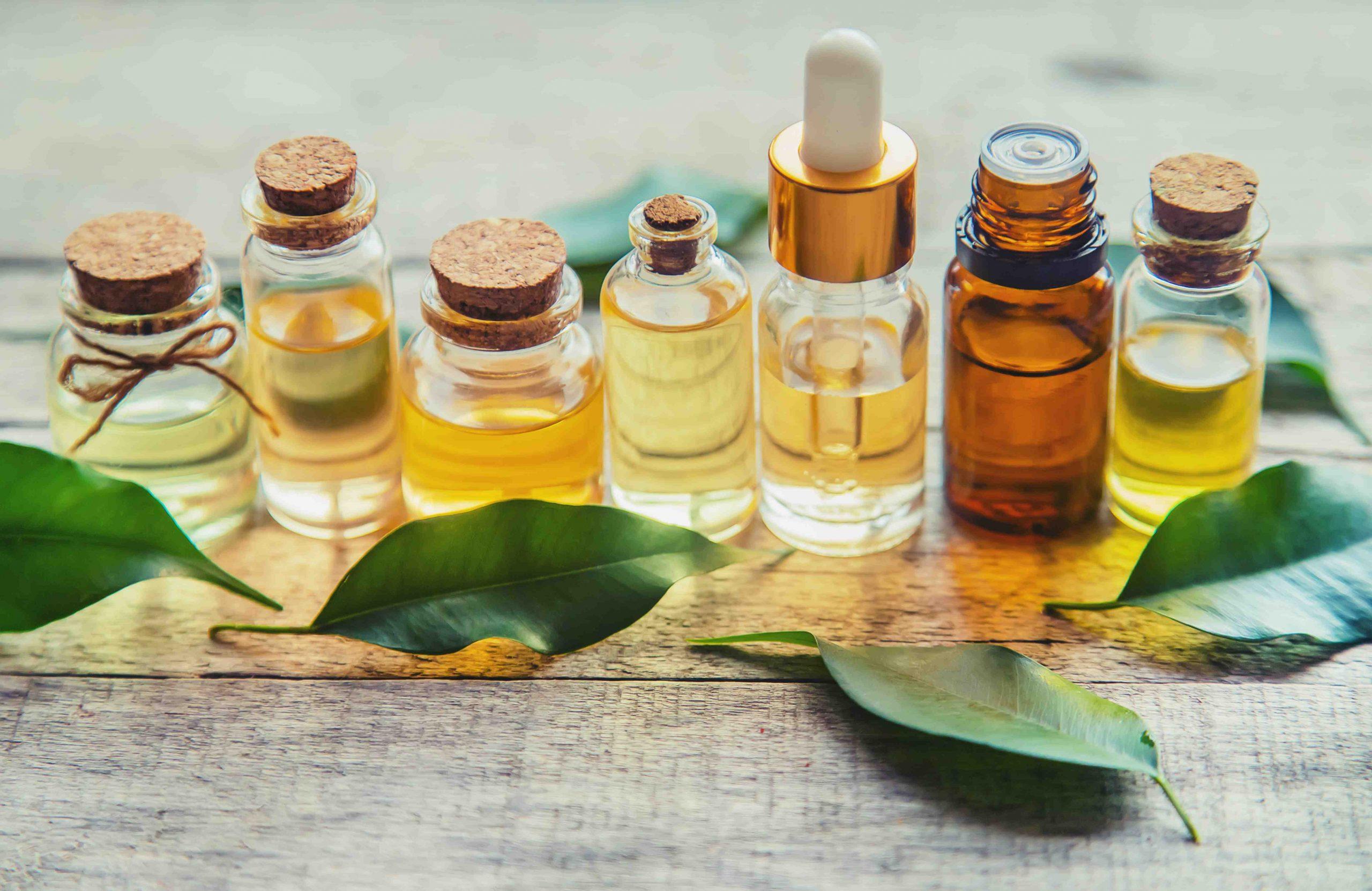 Quelles sont les vertus de l'huile essentielle d'arbre à thé ?