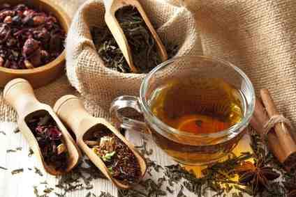 Quelle est la différence entre le thé vert et le thé noir ?