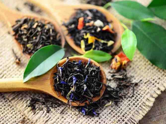 Quels sont les effets du thé noir ?